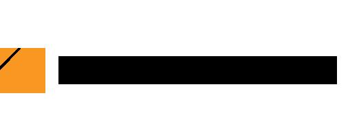 ELO 20 Logo